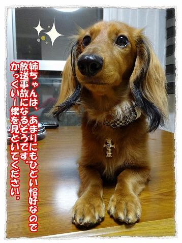 2014_1_6_3.jpg