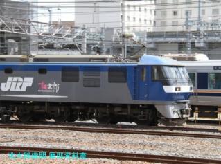 京都駅にさりげなく 10