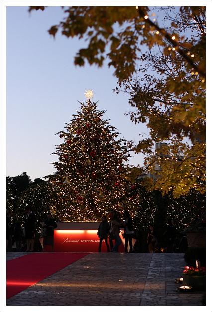 2012-11-22-8.jpg