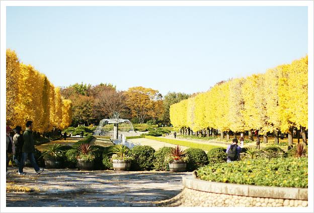 2012-11-27-10.jpg