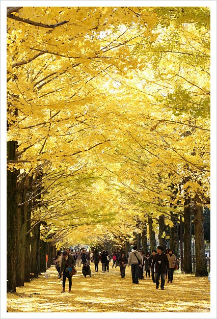 2012-11-27-18.jpg
