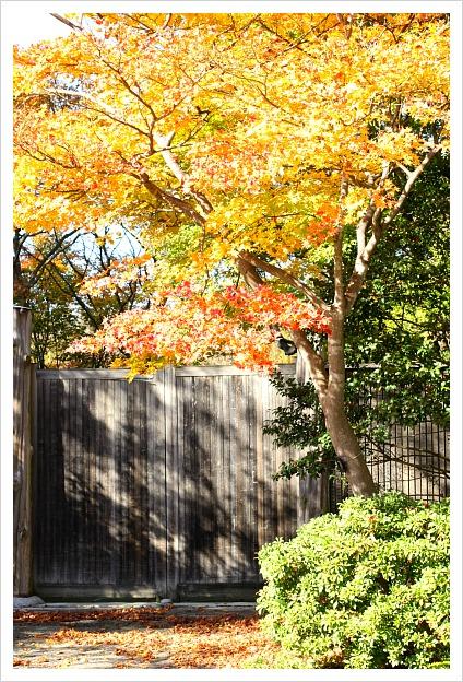 2012-12-04-10.jpg
