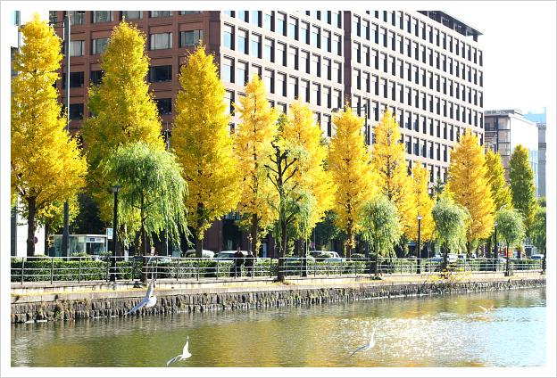 2012-12-09-14.jpg