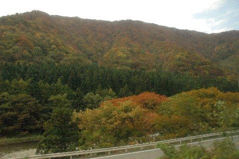 最上川沿いの紅葉