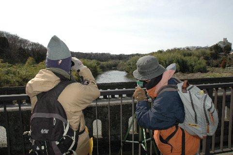 4花見川・花島橋から望む