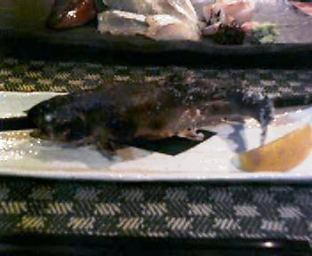 岩魚串焼き