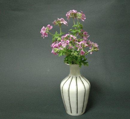 ローズゼラニウムと線象嵌花器