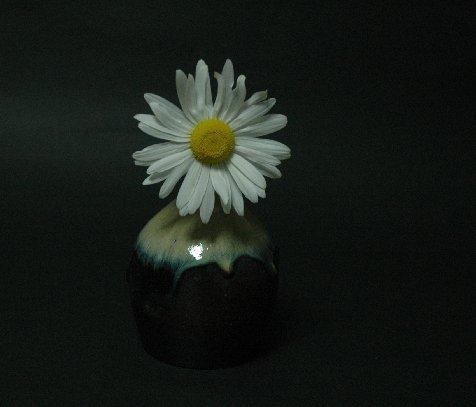 道端の花3