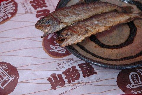 骨酒用岩魚