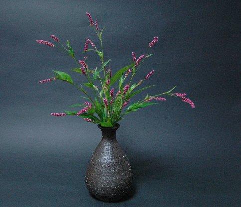 アカマンマの花