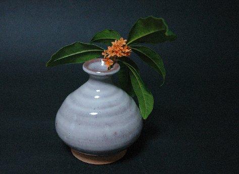 キンモクセイの花2