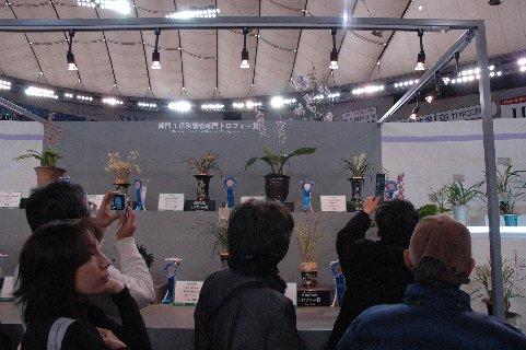 東洋ラントロフィー賞