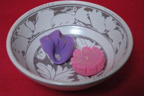桔梗、秋桜 in 彫三島白花文鉢