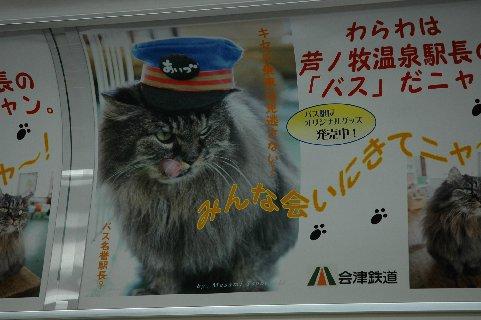 """芦ノ牧温泉の駅長猫""""バス"""""""
