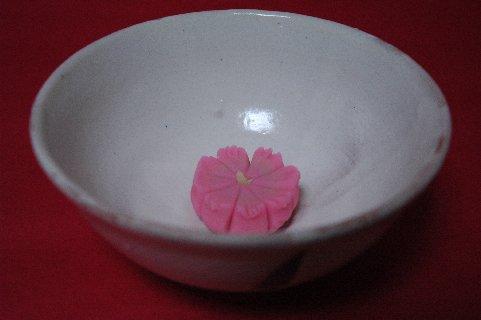 菓子は秋桜 器は粉引茶碗