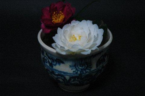 白・赤山茶花in安南絞り手茶碗