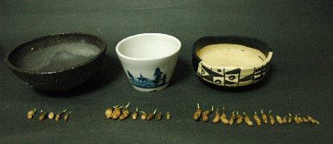 黒織部・蕎麦猪口・山野草鉢