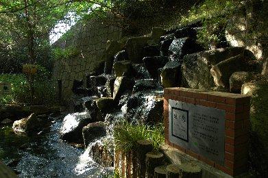 清流の始まりの滝