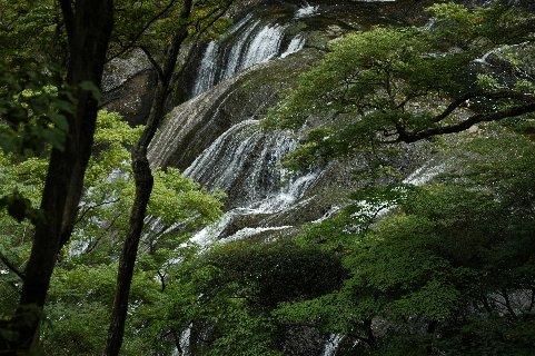 滝上段部を見ながら