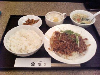 豚肉とネギの味噌炒め
