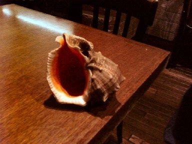 にし貝の貝殻