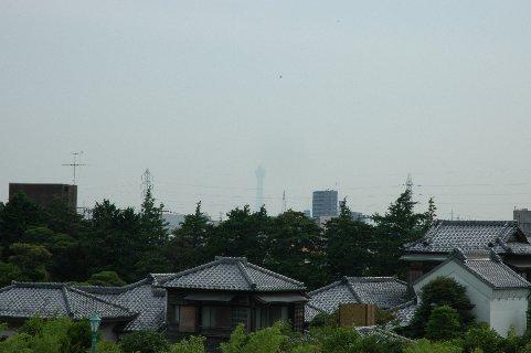 柴又公園の土手から見た山本亭&東京ツリータワー