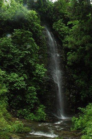 小沢又の滝