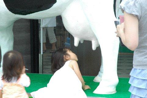 乳牛と少女