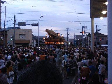 鷹/仁井宿