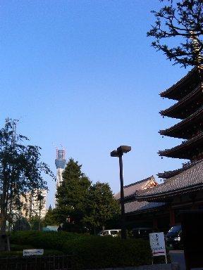 浅草寺五重塔辺りから見たスカイツリー