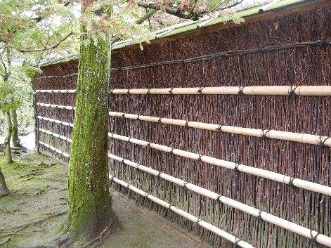 御庭口門脇の黒文字垣