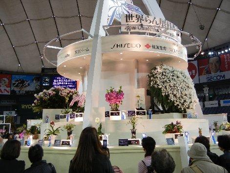 日本大賞展示