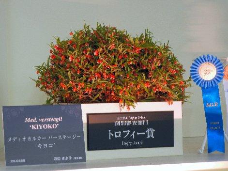 トロフィー賞メディオカルカー