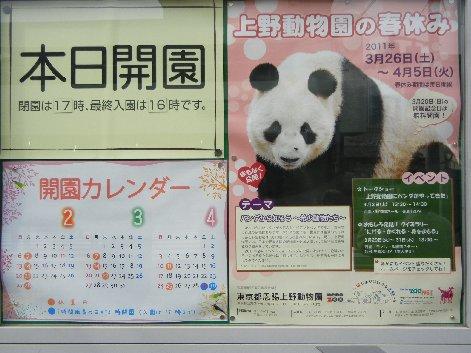 パンダが上野にやってきた