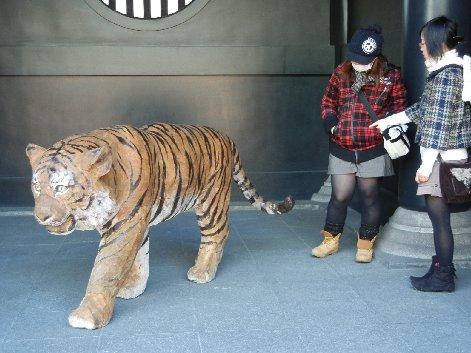 虎像と女子学生