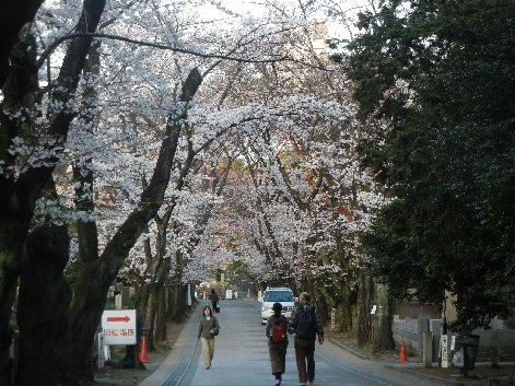 乃木将軍通り(東三通り)