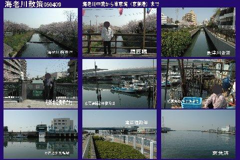 海老川散策050409