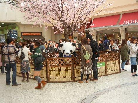 上野駅構内のパンダと桜