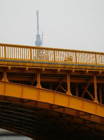 蔵前橋から見たスカイツリー