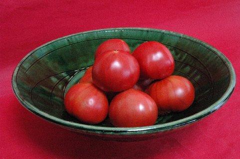 完熟トマトin総織部大鉢