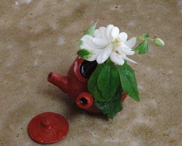 八重咲きどくだみの花inミニ急須