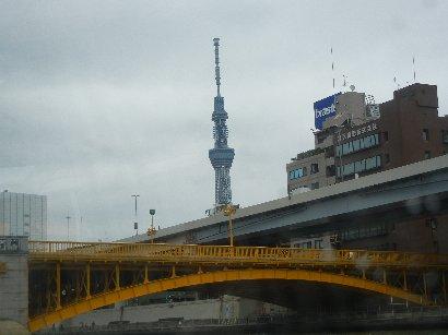 蔵前橋からのツリー