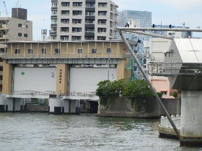 亀島川排水機場と霊岸島水位観測所