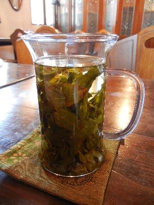 中国茶・金萱高山