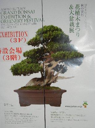 大盆栽展ポスター