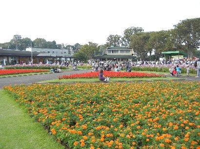 グリーンセンター公園・緑のステージ