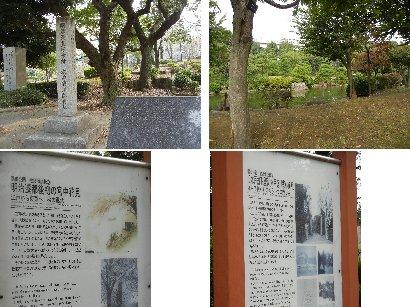 墨田公園(旧水戸藩下屋敷跡)