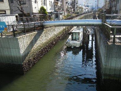福島橋から見た大島川西支川?