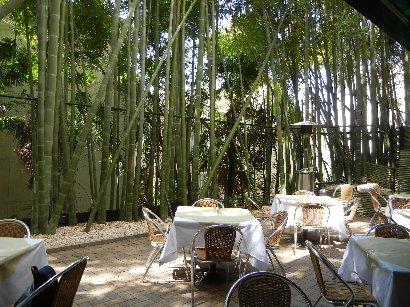 竹林のテラスで