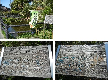 葛飾村の湧水地・溜り